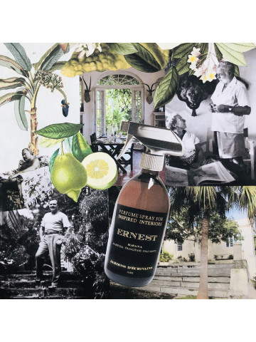 Interior perfume spray - ERNEST - Havana